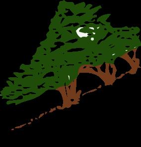 Educación, Cultura y Medio Ambiente